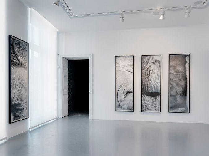 artwork frame by Atelier Mondineu